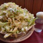 【大盛り】仙龍 所沢市 深谷ネギ約4本分を使ったネギラーメンで撃沈。ホルモンもウマい常連に愛される人気店【圧倒的】