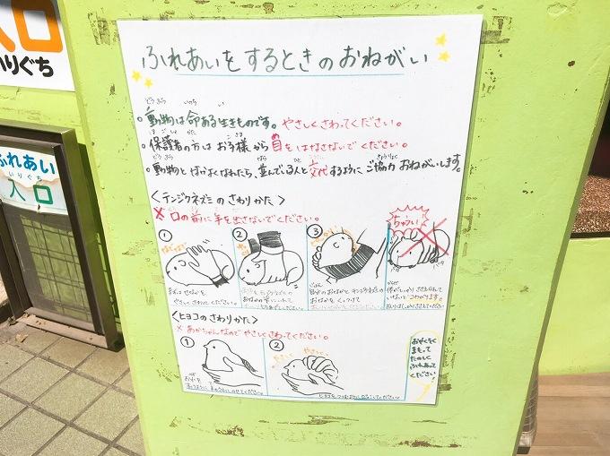 【お出かけ】智光山公園こども動物園 狭山市 入園料が安く短時間でも楽しめる☆大人200円子供50円
