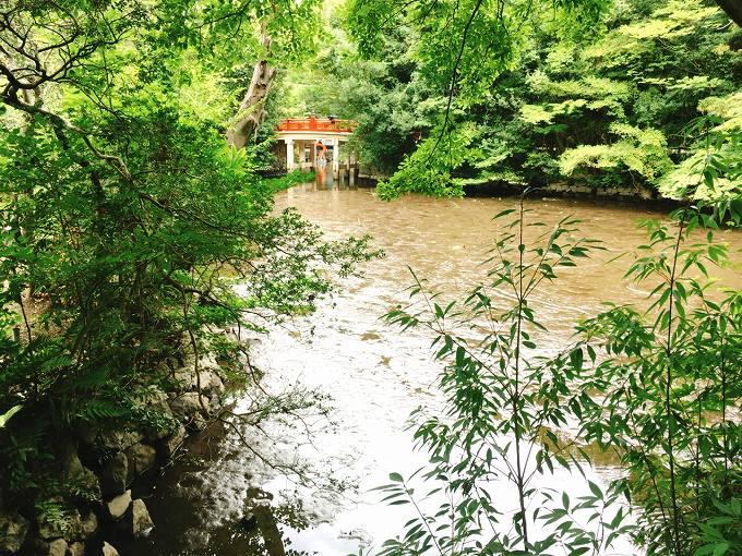 【パワースポット】大宮 氷川神社 「池の水をぜんぶ抜く」の前日に行ってきた!底が見えるレア景色に遭遇