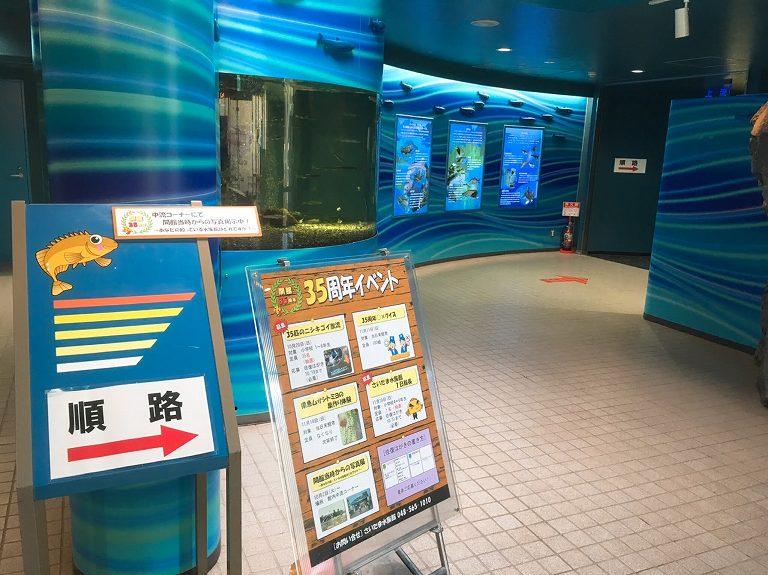 【35周年】さいたま水族館 羽生市 荒川水系の魚・カメの触れ合い体験ができるよ【駐車場無料】