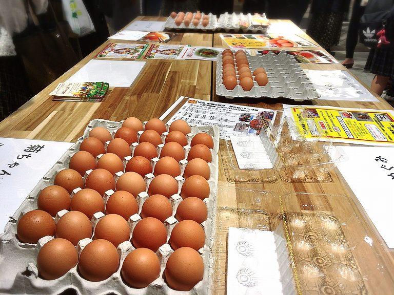 【行列】池袋のたまごかけごはん祭りは大盛況!食べた卵と感想を合わせて紹介するよ♪【売り切れ御免】
