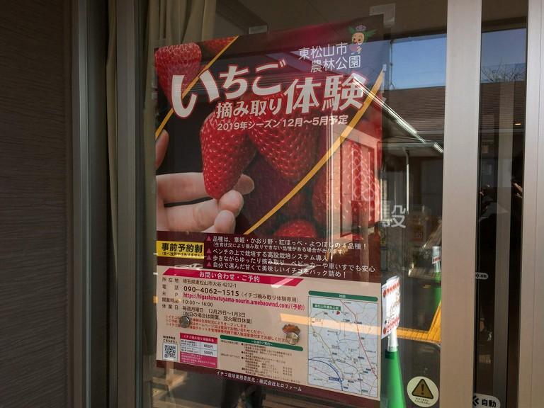 【おすすめ】東松山市農林公園 いちご摘み取り体験の予約方法や料金を紹介☆4品種を好みでパック詰め【30分】