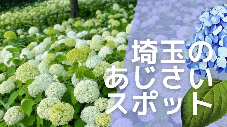 埼玉のアジサイが綺麗な名所まとめ 見頃は6月上旬から7月上旬